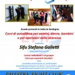 Palestra FIGHT CLUB (Quartu S. Elena). Flyer A5 (retro) (Novembre 2012)